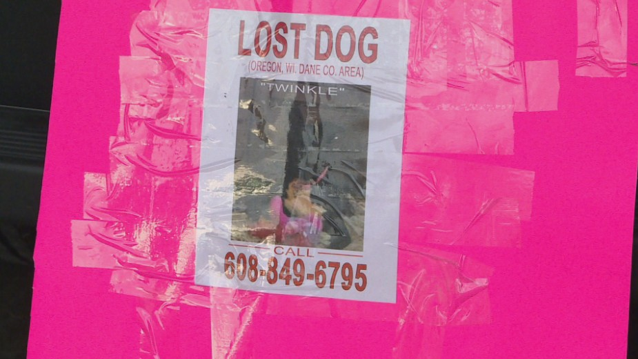 Brown Paws Rescue pink lost dog sign