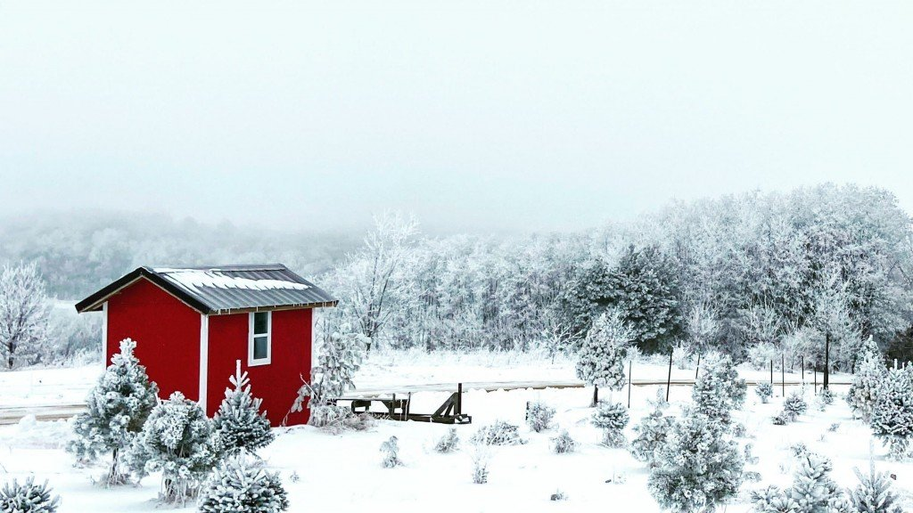 red barn peaking out in a completely snow covered forrest
