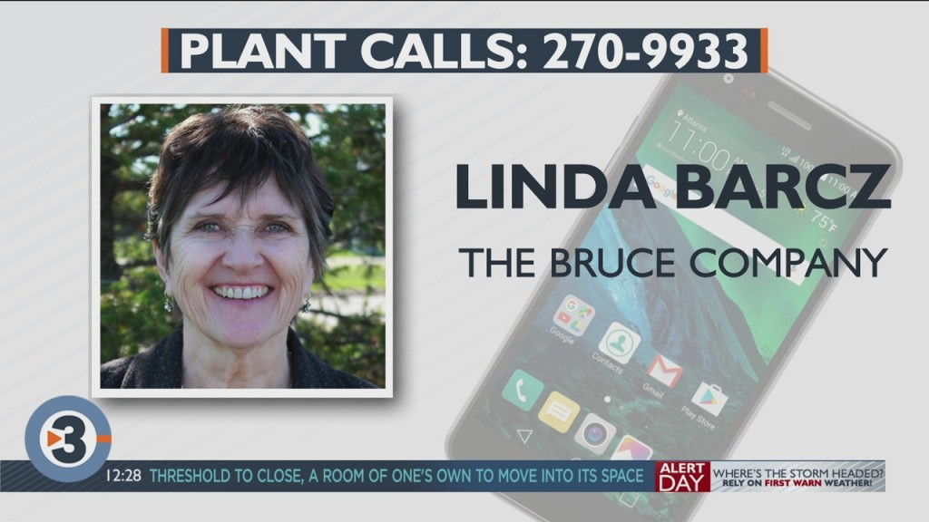 Linda Barcz Answers Your Plant Questions