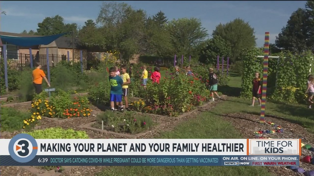 Ssm Health: Sustainable Habits Are Good For More Than The Environment