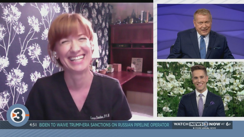 Dr. Carrie Donahue Answers Your Pet Questions