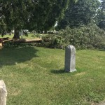 Downed trees at a cemetery in Verona