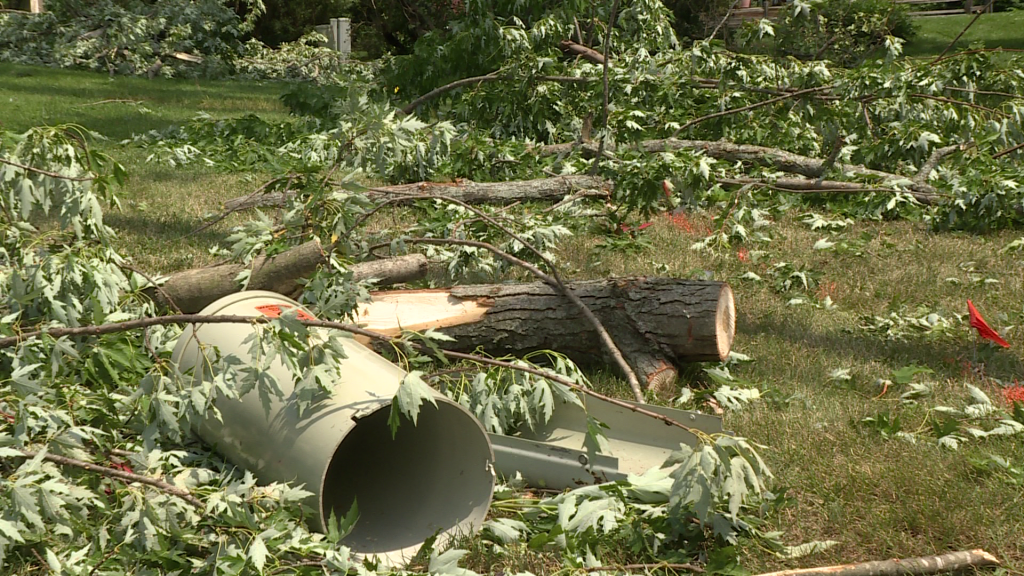 debris in a yard following the storms