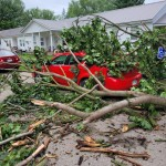 Tree Branches Cover A Car After A Strong Wednesday Night Storm In Freedom Via Shanna Stormer