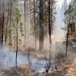 Largest Fire Grows, Force Evacuation Of Wildlife Station