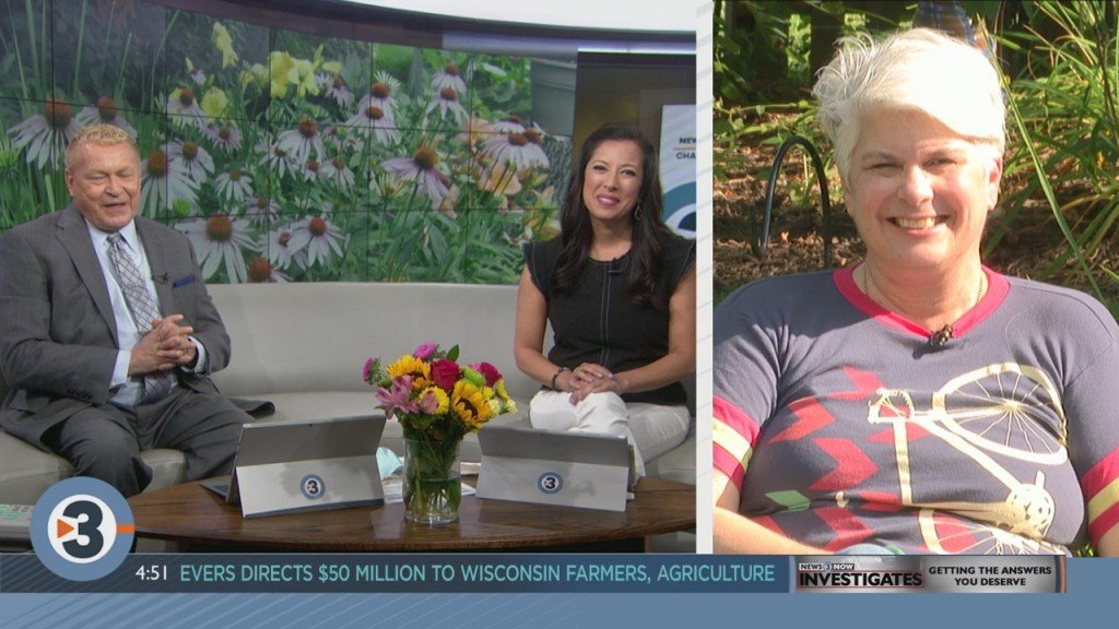 Lisa Briggs Answers Your Plant And Garden Questions