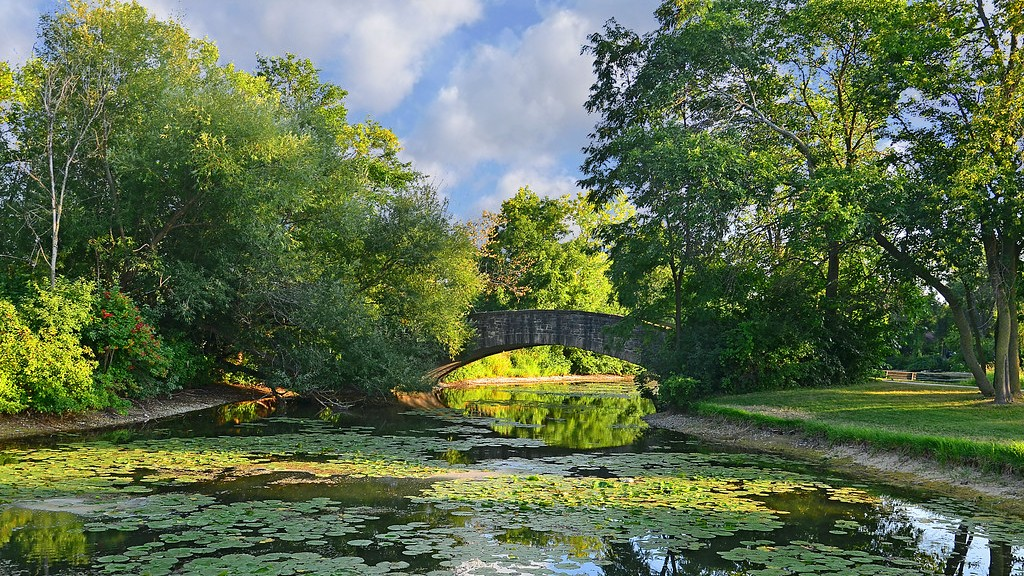Tenney Park, featuring a pond, lily pads and a bridge overlooking the lagoon in Madison, Wisconsin.