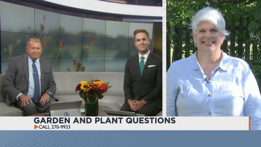 Answering Your Plant And Garden Questions