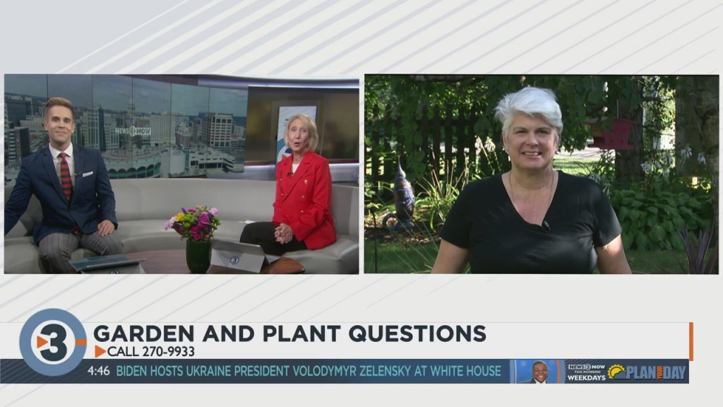 Your Plant And Gardening Questions Answered