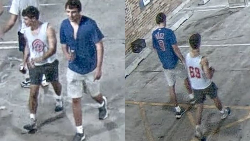 Downtown Battery Suspects