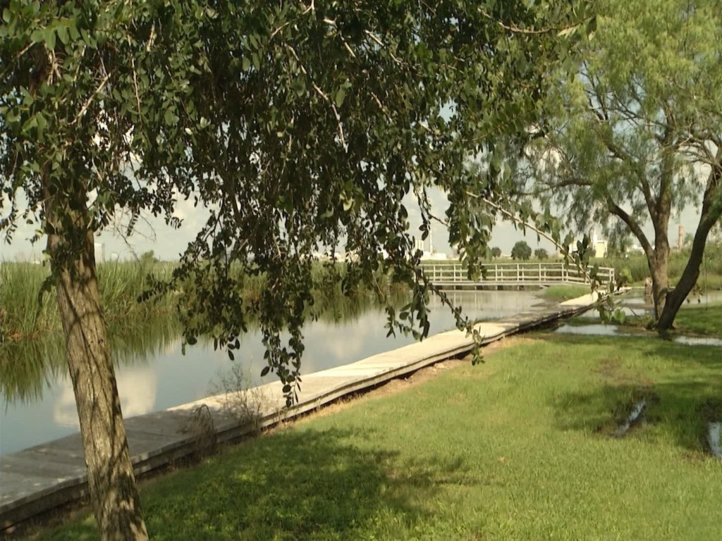 Teachers Help Create More Opportunities for Students at Inivista Wetlands