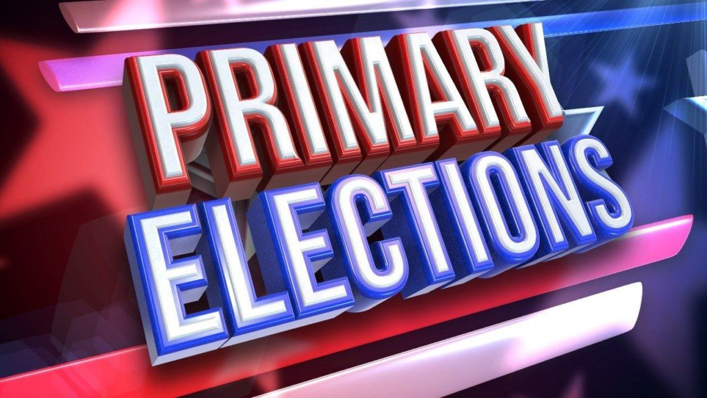 Victoria County Primary Election Results