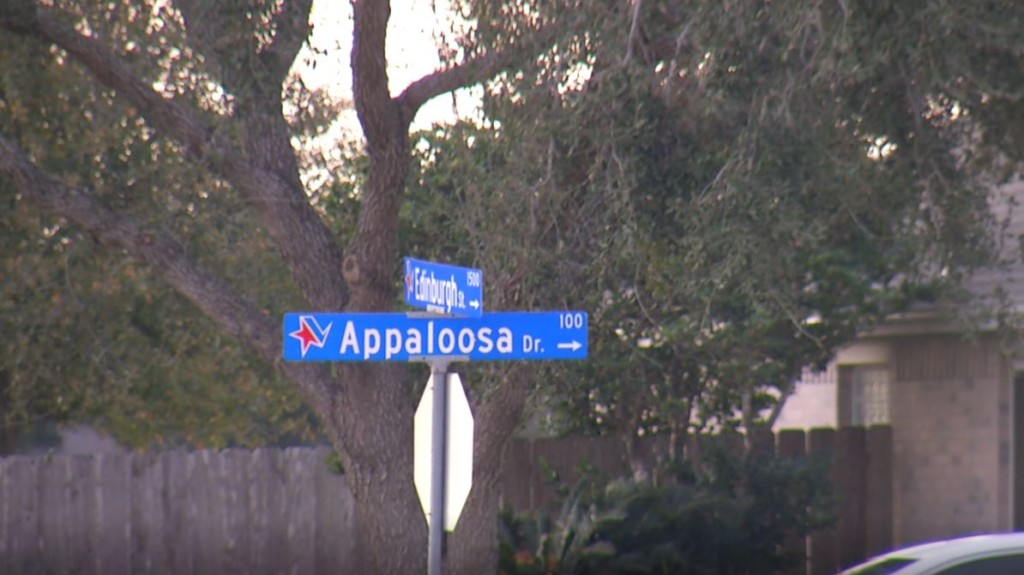 VPD investigating early morning shooting on Appaloosa Drive