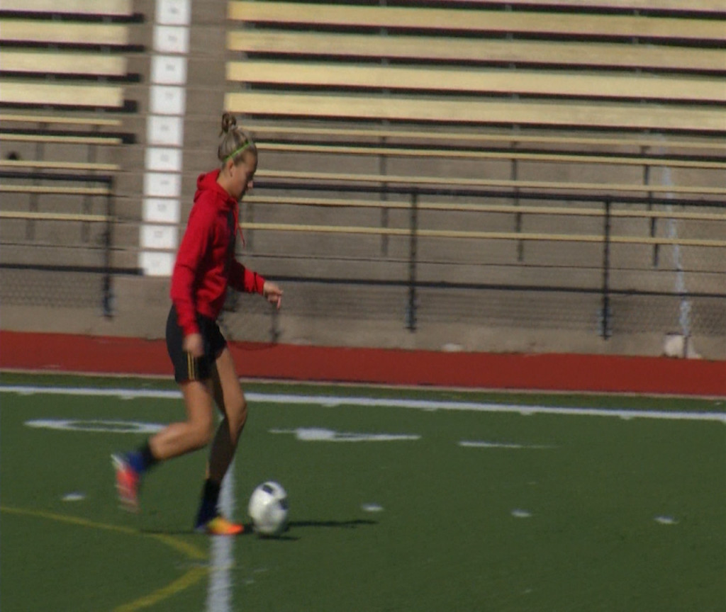 VISD Girls Soccer Bi-District Previews