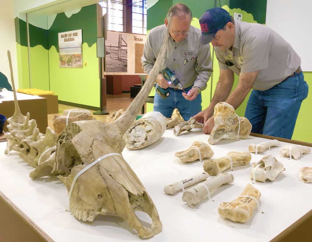 Museum of the Coastal Bend to unveil new exhibit on Feb. 22