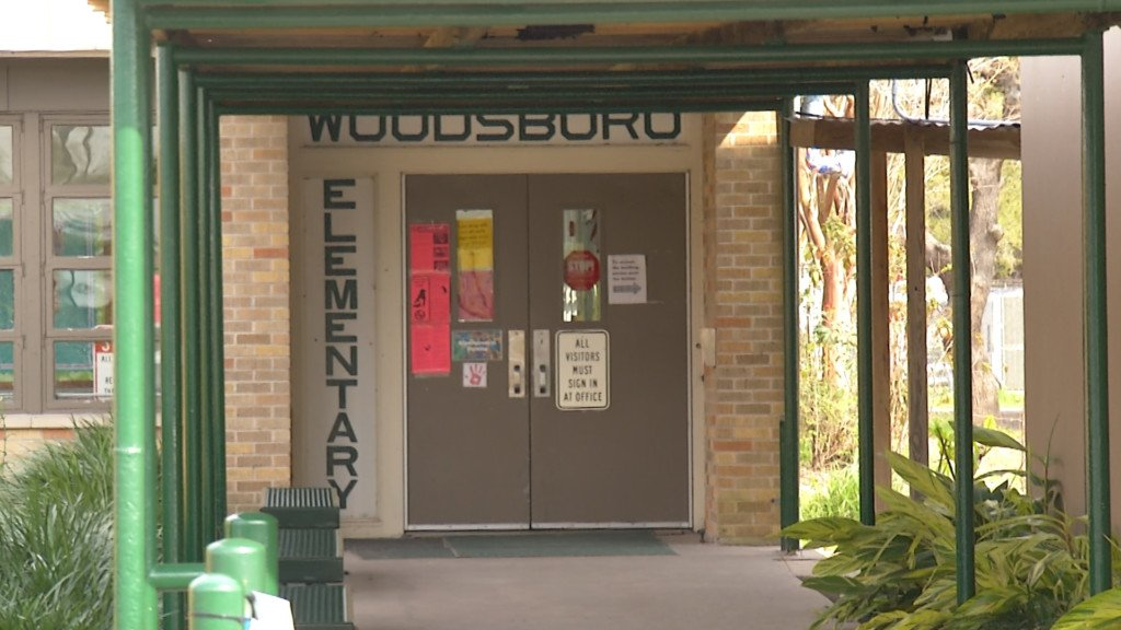 Bat with rabies found in Woodsboro school cafeteria