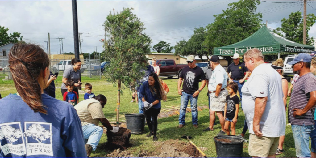 30 trees gifted to Woodsboro by two environmental organizations