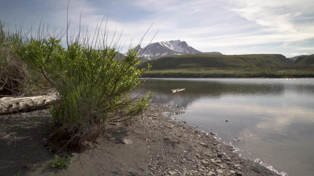 Lawsuit tries to stop mine in Alaskan salmon spawning areas