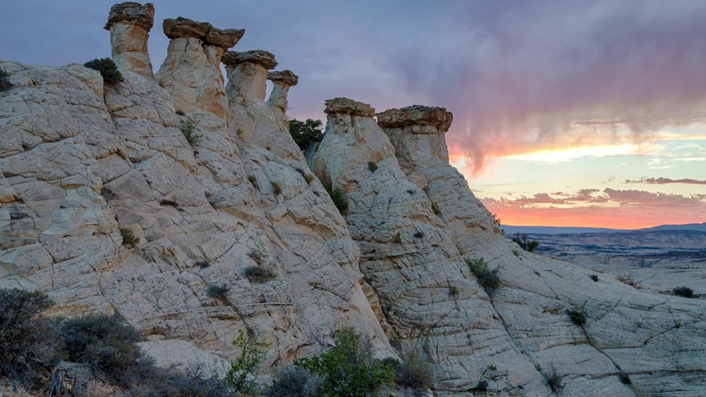 Study: Admin enacts largest reduction of protected lands in US history