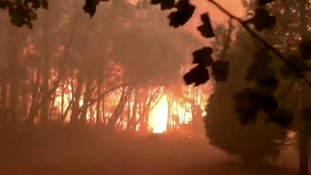 New South Wales in state of emergency as Australia bushfires rage