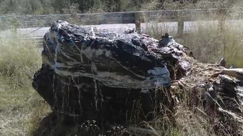 'Wizard Rock' returned to Arizona national forest