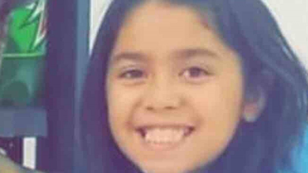 Dogs maul 9-year-old girl to death in Detroit