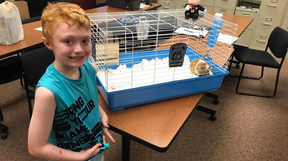 Police give boy Guinea pig after he loses pet in fire