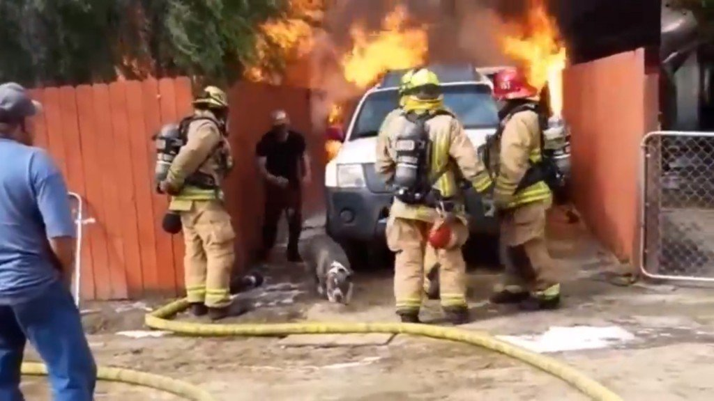 California man goes back for dog after fleeing burning home