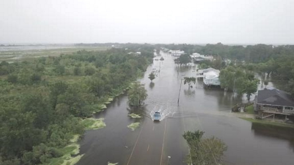 Hurricane Barry reduces Gulf 'dead zone'