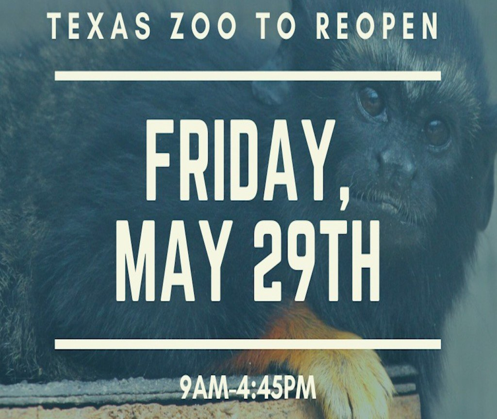 The Texas Zoo opening day has changed due to Governor Greg Abbott new order