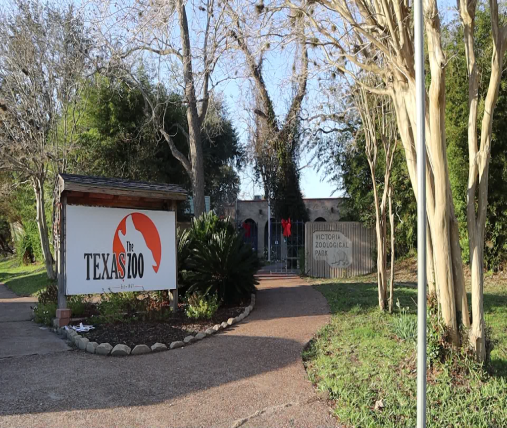 Texas Zoo requring guests to wear facial coverings