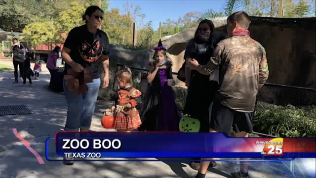 The Texas Zoo Sees Over 750 Visitors During Annual Zoo Boo