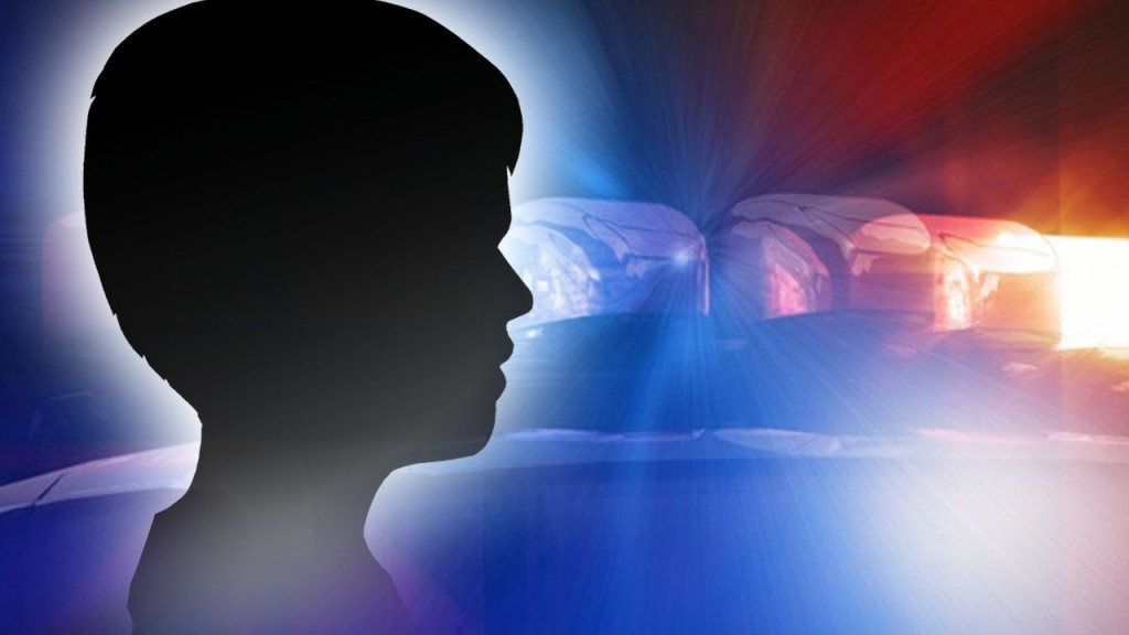 A 10-year-old boy was attacked by the family dog