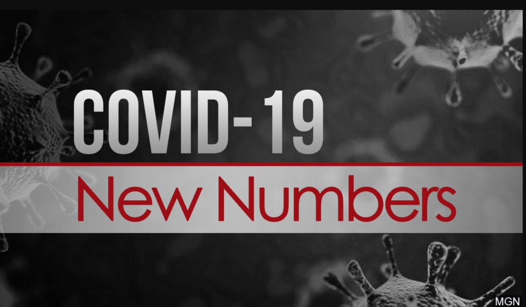 Daily COVID-19 Numbers