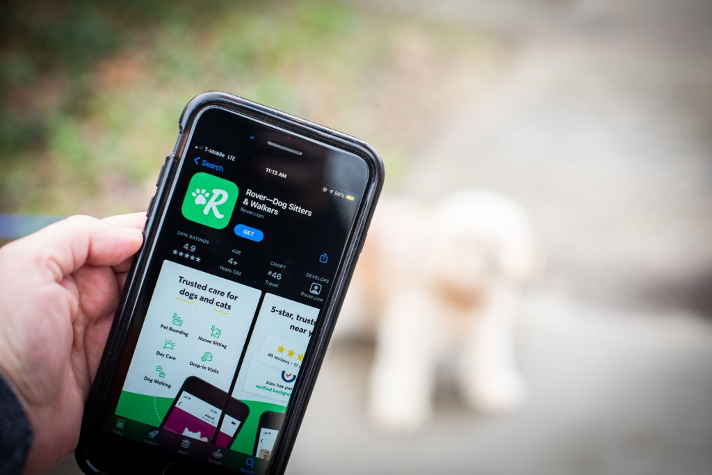 Pet App Rover Faces Flak After Dogs Went Missing Or Died