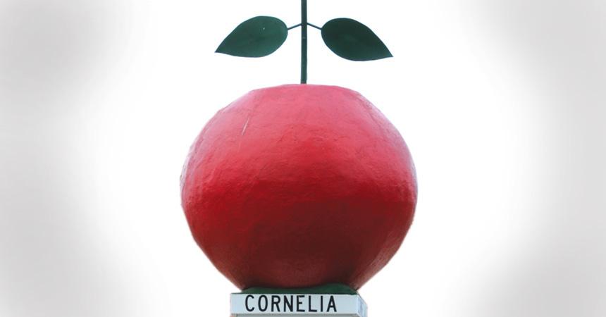 Corneliaapple