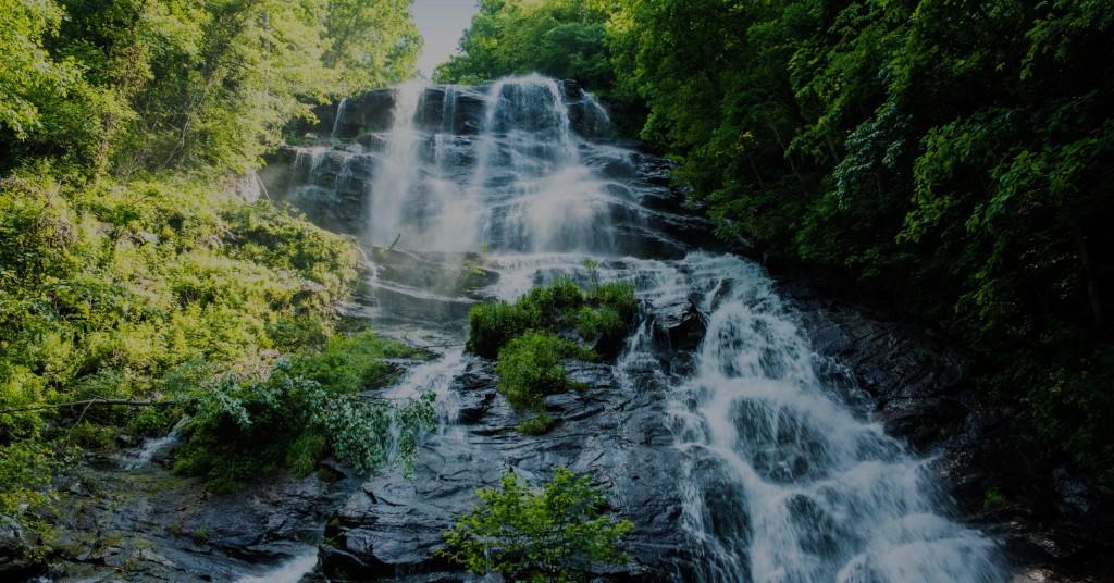 Dawsonville Amicolola Falls State Park 1533