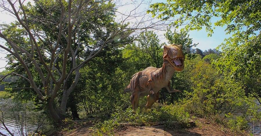 Dino On Island (3)