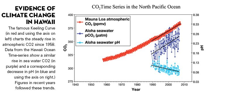 Evidence of Climate Change in Hawaii The famous Keeling Curve (in red and using the axis on left) charts the steady rise in atmospheric CO<sub>2</sub> since 1958. Data from the Hawaii Ocean Time-series show a similar rise in sea water CO<sub>2</sub> (in purple) and a corresponding decrease in pH (in blue and using the axis on right.) Figures in recent years followed these trends.