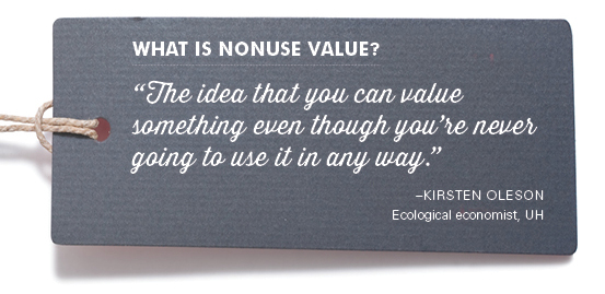 """What is nonuse value? """"The idea that you can value something even though you're never going to use it in any way."""" –Kirsten Oleson Ecological economist, UH"""