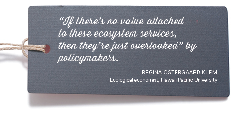 """""""If there's no value attached to these ecosystem services, then they're just overlooked"""" by policymakers. –Regina Ostergaard-Klem Ecological economist, Hawaii Pacific University"""