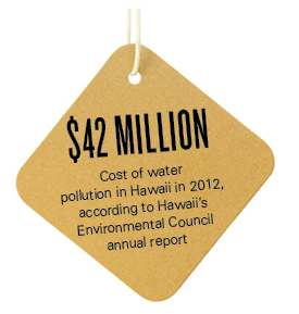$42 million Cost of water pollution in Hawaii in 2012, according to Hawaii's Environmental Council annual report
