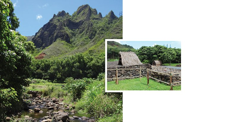 Papahana Kualoa, the nonprofit that maintains land at the top of Heeia valley, focuses on cultural and environmental education, stream restoration and replanting native flora that hold sediment from washing into Kaneohe Bay. Photos: courtesy of Papahana Kualoa