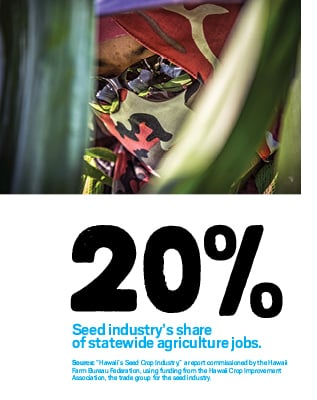 """20%: Seed industry's share of statewide agriculture jobs. Source: """"Hawaii's Seed Crop Industry,"""" a report commissioned by the Hawaii Farm Bureau Federation, using funding from the Hawaii Crop Improvement Association, the trade group for the seed industry."""