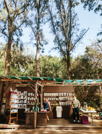 The sales stand at Paradise Meadows on South Point Road in Kau is framed by a few of the property's many trees. Operating the stand on this day are Brenda Bart, left, and Megan Collins.