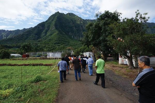 March's table-to-farm event was held at Nalo Farms in Waimanalo, with Olomana and Koolau as majestic backdrops. Photo: Courtesy of Sheraton Maui