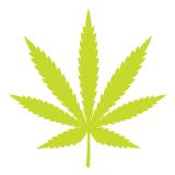 HB-08-16_Marijuana_6
