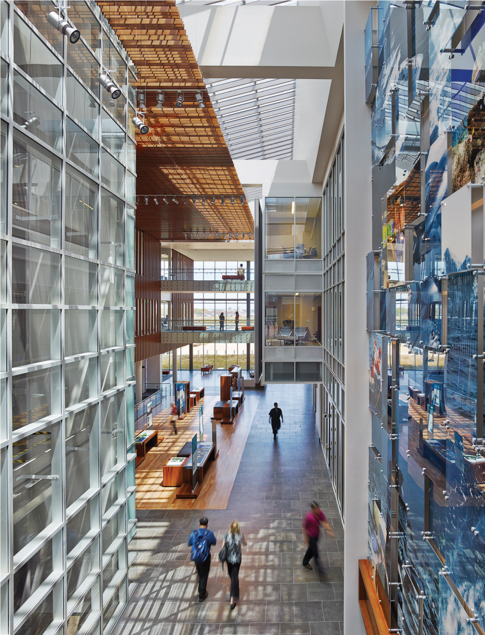 Open ground-to-roof courtyards bring natural light deep into the building and glass walls allow the light to spread widely. PHOTO: ALAN KARCHMER