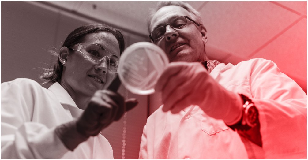 Hawaii Biotech is working on a vaccine to protect against Zika. Here, Dr. Jaime Horton and vaccine research director David Clements study bacterial colonies on a petri plate. Photography by Aaron K. Yoshino