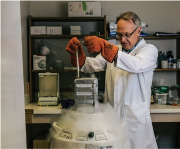 David Clements, vaccine research director at Hawaii Biotech, retrieves insect cells from liquid nitrogen storage. A smiliar secure container stores Zika virus for research. Photography by Aaron K. Yoshino